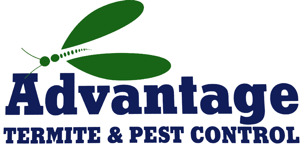 Advantage Termite and Pest Control